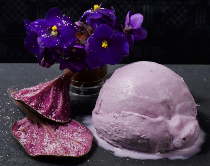 Con pétalos de violetas africanas